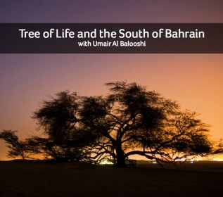 Tree of Life and the South of Bahrain